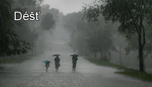 Déšť a voda